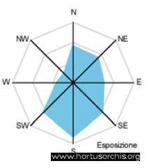 Neo nid 4